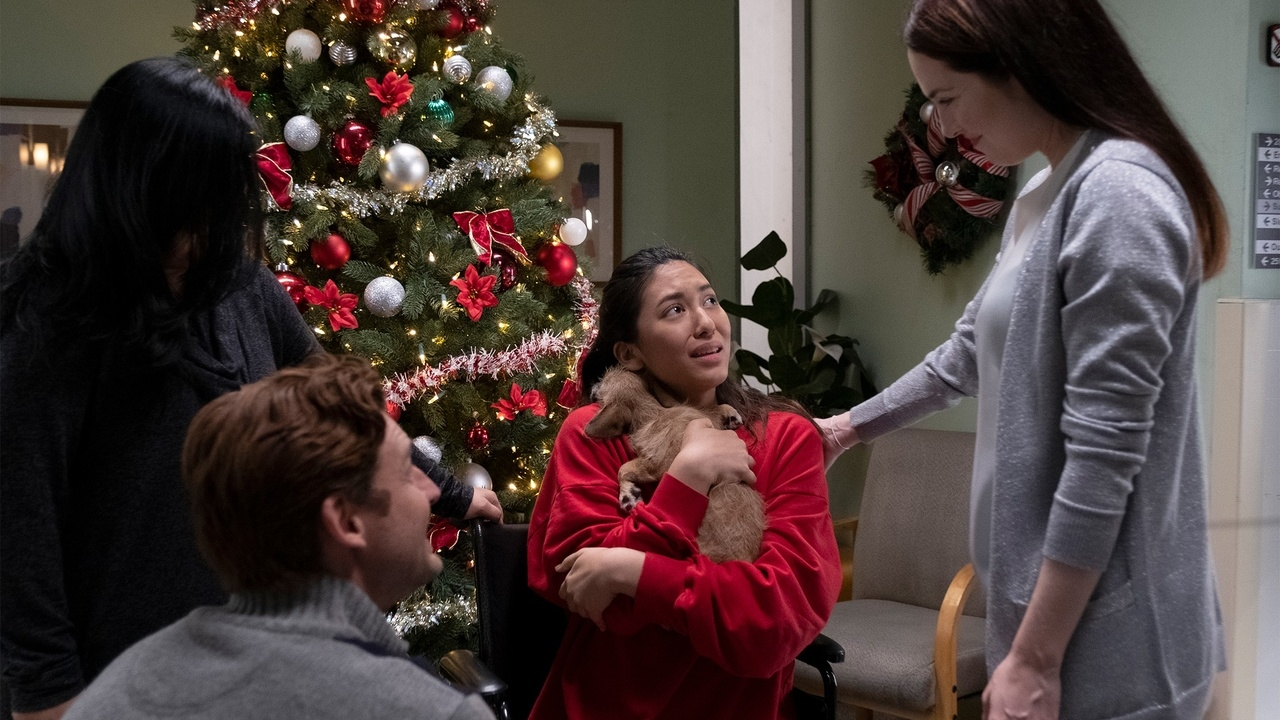 Il Natale dei cuccioli (2019) – 12 Pups of Christmas