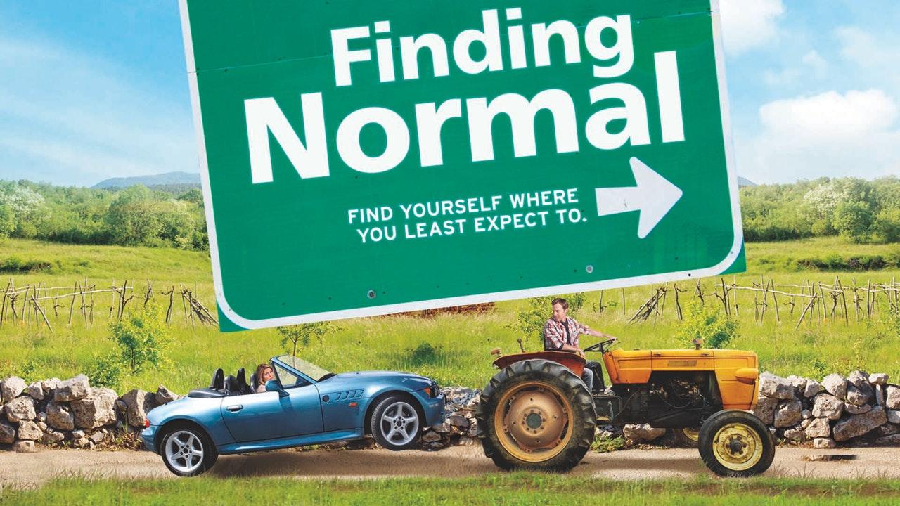 Cercando la normalità (2013)