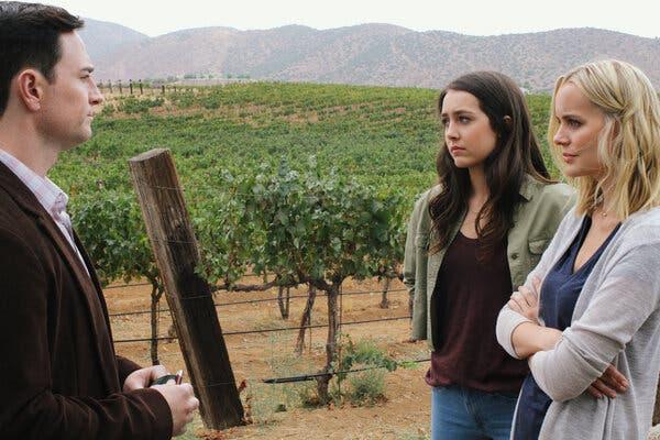 Delitto tra le vigne (2020)